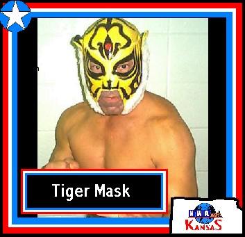 tiger_mask.jpg